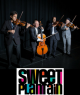 Sweet Plantain- String Quartet